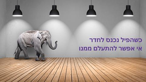 יום הפיל הבינלאומי